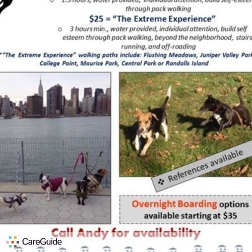 Pet Care Provider Andy Posada's Profile Picture