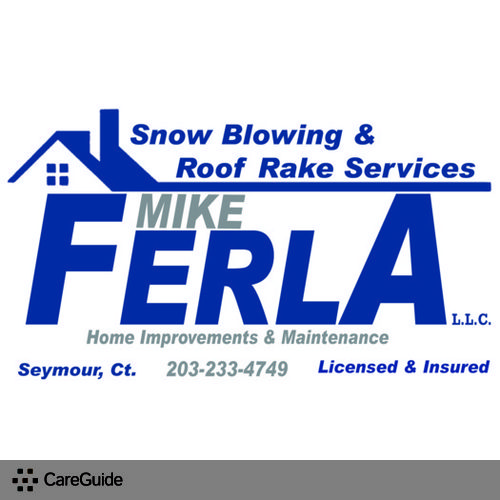 Snow Blowing Amp Roof Rake Services Roofer Seymour Ct