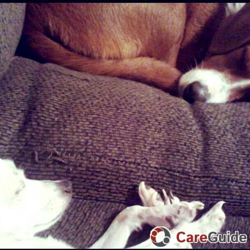 Pet Care Job Meighan 's Profile Picture