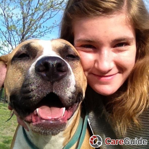 Pet Care Provider Maddy  King's Profile Picture