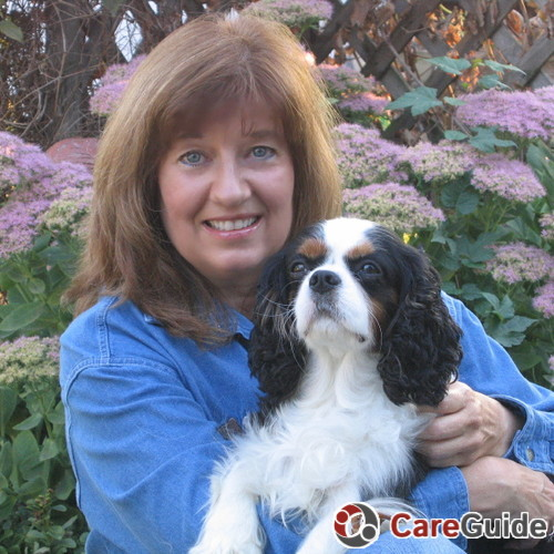 Pet Sitter in Harrison
