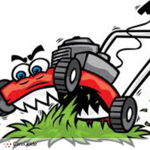 Image Result For Lawn Mower Services Near Me