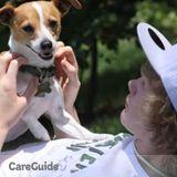 Dog Walker, Pet Sitter in Manassas