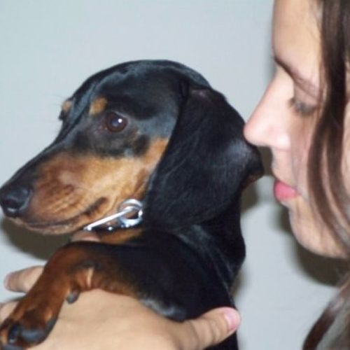 Pet Care Provider Amber T Gallery Image 1