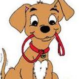 WalkEase Dog Walking Seeking Work