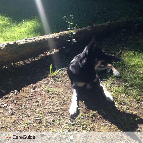 Pet Care Provider Amanda Johnson's Profile Picture