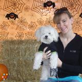 Dog Walker, Pet Sitter, Kennel in Roseville
