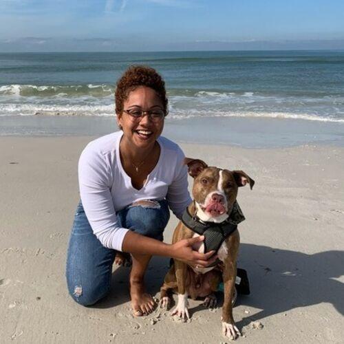 Dunedin, Florida Pet Carer