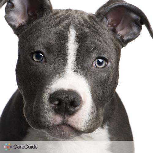 Pet Care Provider alvin b's Profile Picture