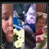 Babysitter, Daycare Provider in Mishawaka