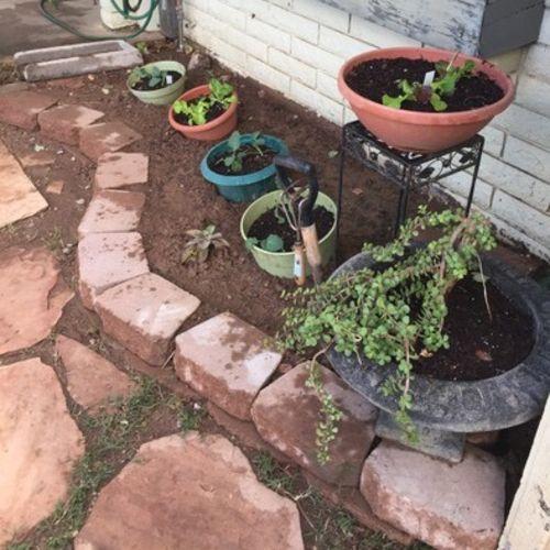 Gardener Provider Luis Sanchez Gallery Image 2