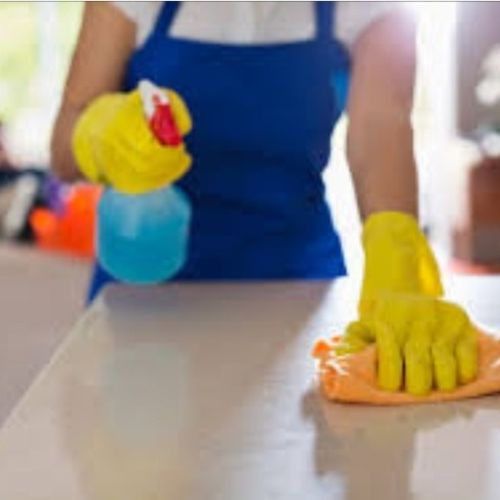 Consistent House Cleaner in Westminster