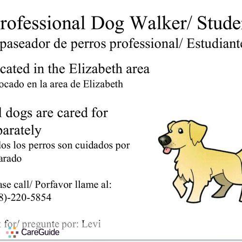 Pet Care Provider Levi T's Profile Picture