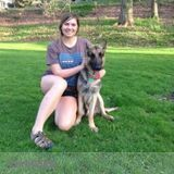 Dog Walker, Pet Sitter in Richmond