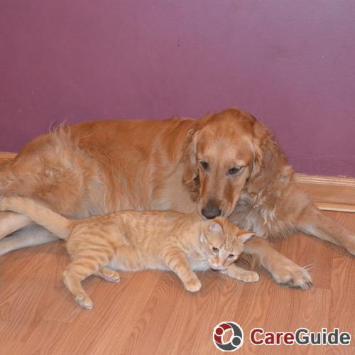 Pet Care Provider Nola Friedman's Profile Picture
