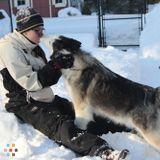 Dog Walker, Pet Sitter in Cohasset