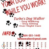 Dog Walker, Pet Sitter in Langley