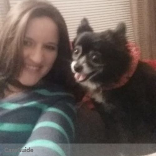 Pet Care Provider Andrea O's Profile Picture