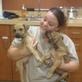 Passionate Pet Care Provider with a Degree in Veterinary Technology: Sparta, WI