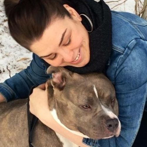 Pet Care Provider Krysta J's Profile Picture