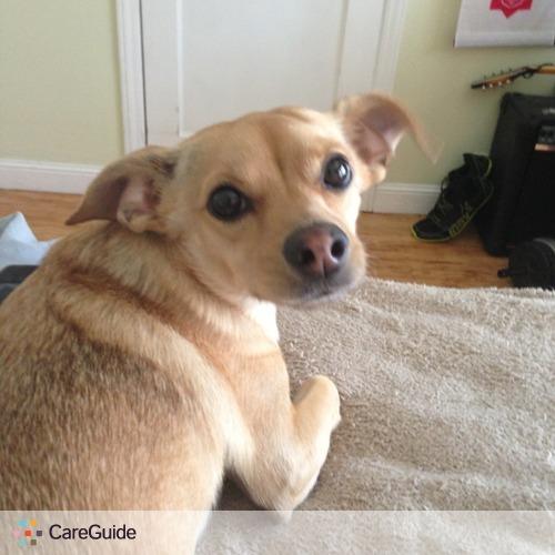 Pet Care Provider Jennifer Parreira's Profile Picture