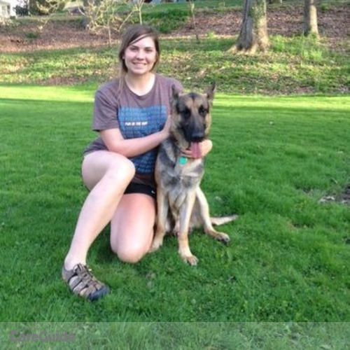 Pet Care Provider Brianna Molchan's Profile Picture