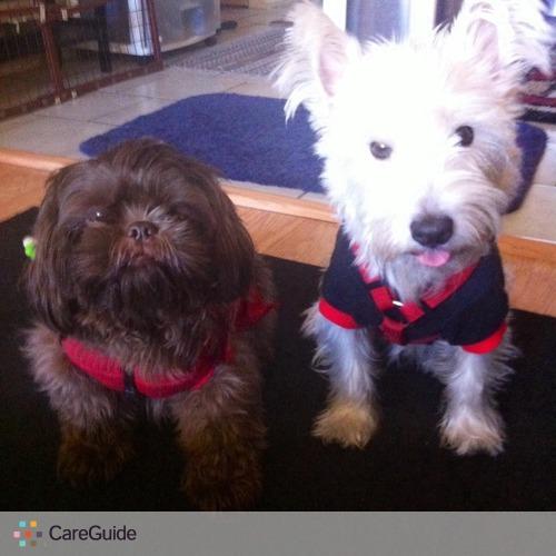 Pet Care Provider Soe Soe S's Profile Picture