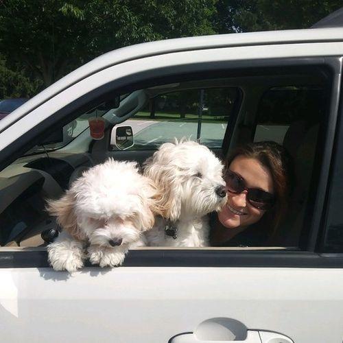 Pet Care Provider Alexandra Coleman's Profile Picture