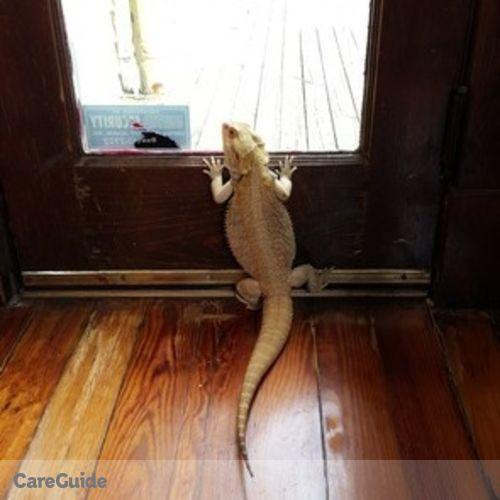 Pet Care Job Lillie Brannen's Profile Picture