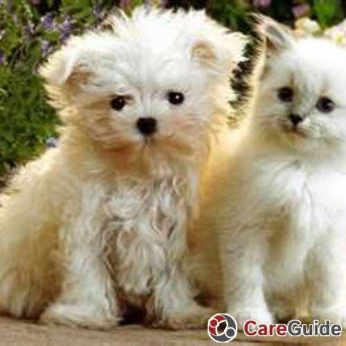 Pet Care Provider Haley Rhea's Profile Picture