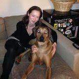 Dog Walker, Pet Sitter in Augusta