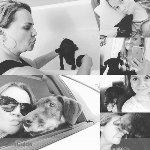 Pet Care Provider Laura B's Profile Picture