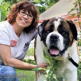 Dog Walker, Pet Sitter in Wasaga Beach