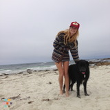 House Sitter in Monterey