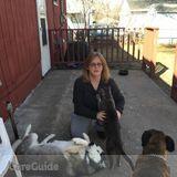 Dog Walker, Pet Sitter in Fridley