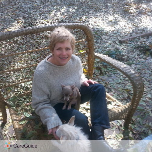 Pet Care Provider Libby B's Profile Picture