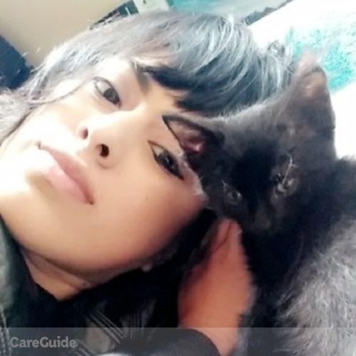 Pet Care Provider Nancy Acosta's Profile Picture