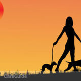 Dog Walker, Pet Sitter in Deltona