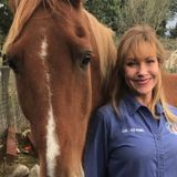 Caring, knowledgeable, experienced animal care available