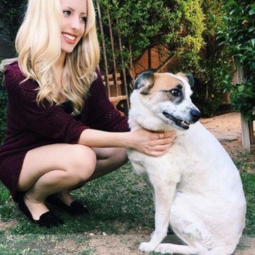 Pet Care Provider Alexandria DeFlorio's Profile Picture