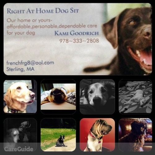 Pet Care Job Kami Goodrich's Profile Picture