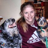 Pet Sitter in Davenport