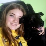 Knowledgeable Dog Walker and Pet Sitter in Holiday