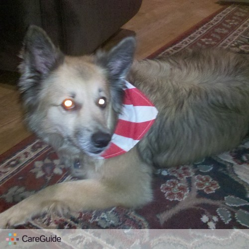 Pet Care Provider Chris V's Profile Picture