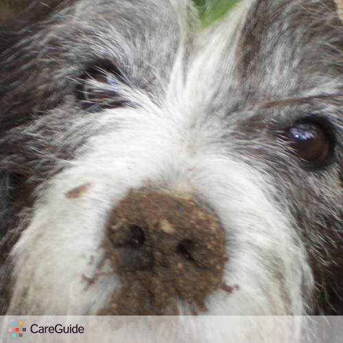 Pet Care Provider April Baker's Profile Picture