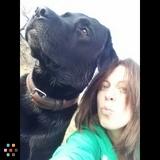 Dog Walker, Pet Sitter in Debary