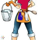 Housekeeper, House Sitter in Methuen