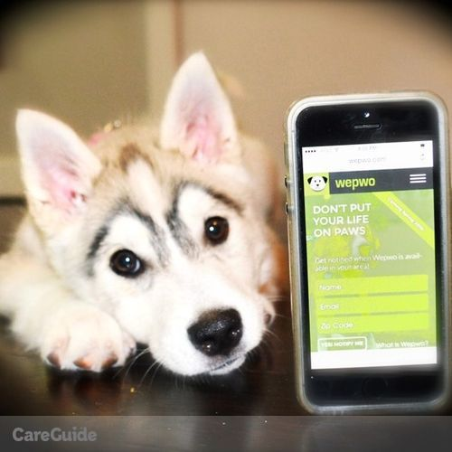 Pet Care Provider Wepwo D's Profile Picture