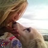 Dog Walker, Pet Sitter in Santa Barbara