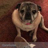 Pet Sitter in Clearlake Oaks